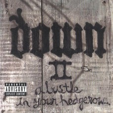 """Down - """"II:A Bustle In Your Hedgerow"""" CD"""